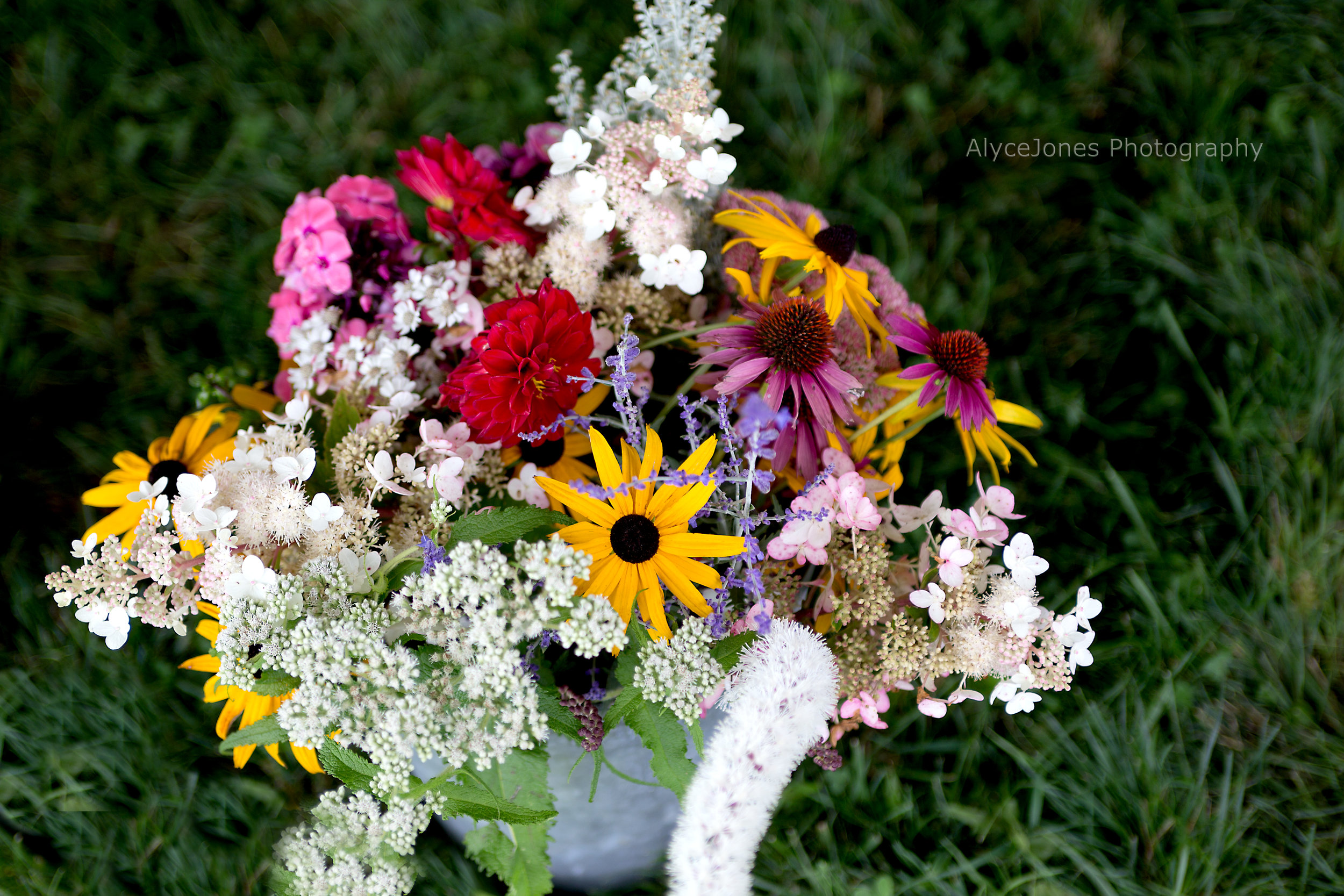 1709_stowejazzfest2017_sunday_flowers_001.jpg