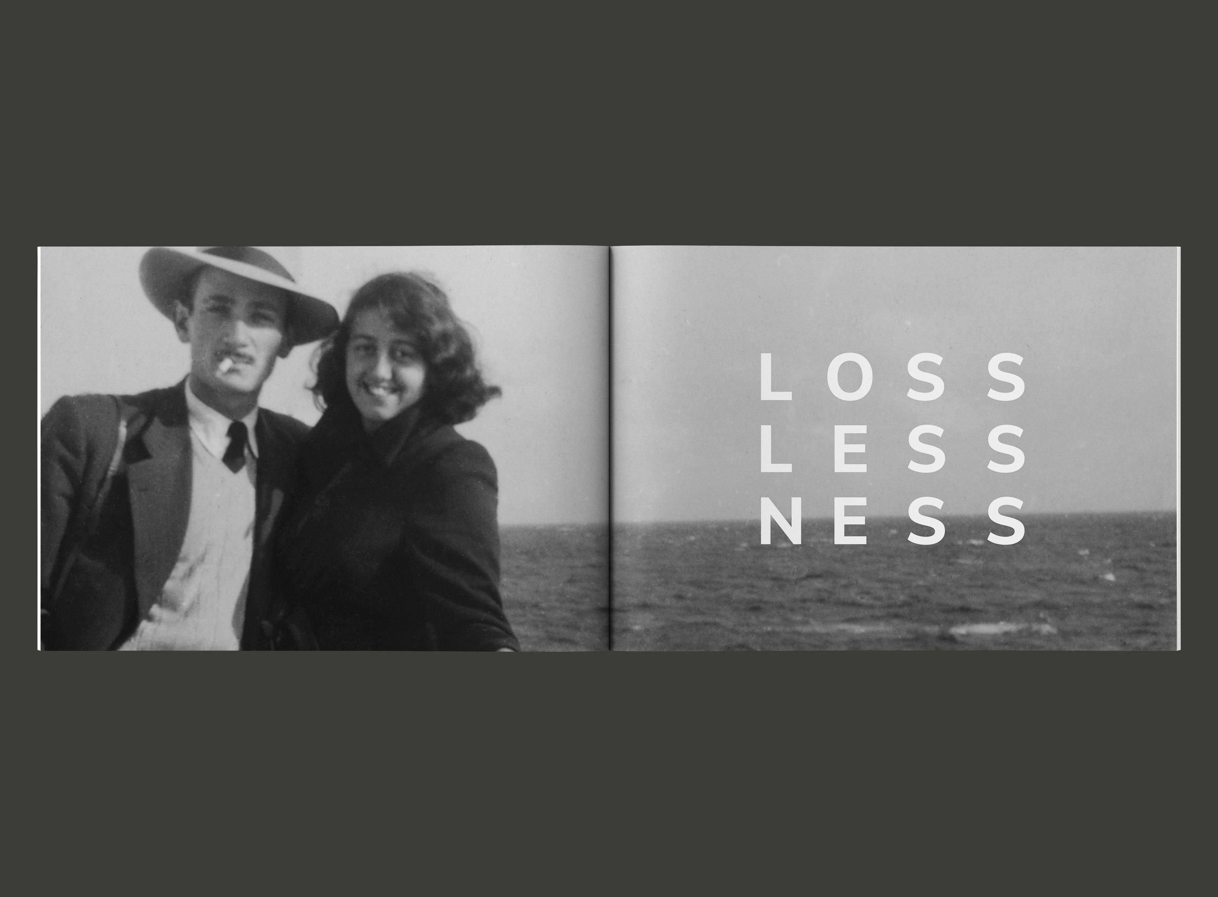 FONN losslessness.jpg