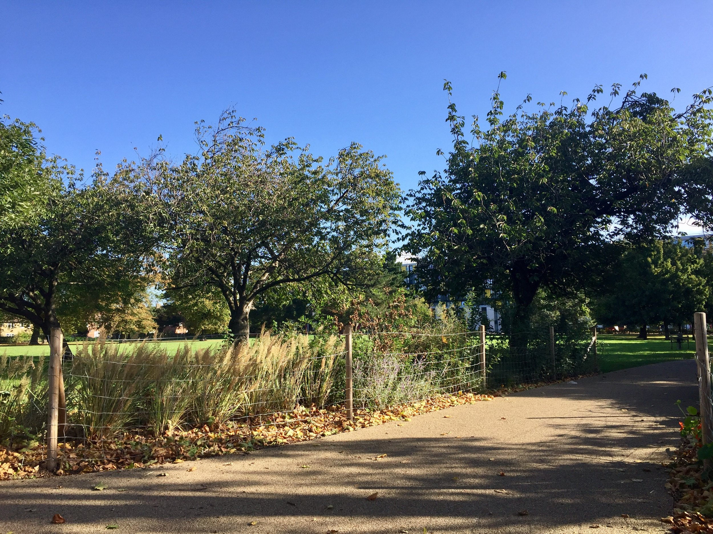 Wormholt Park