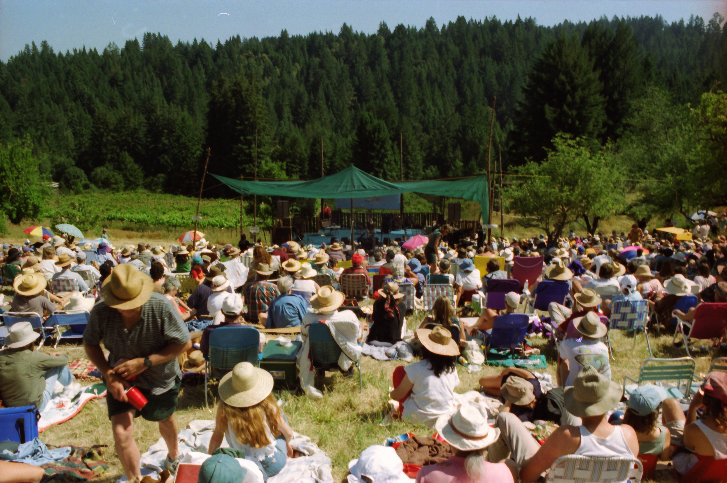 The natural amphitheater as Caswell Vineyards.