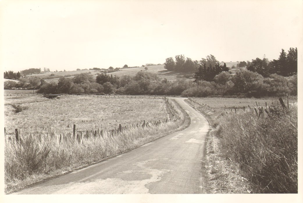 Page 019 - Country Road.jpg