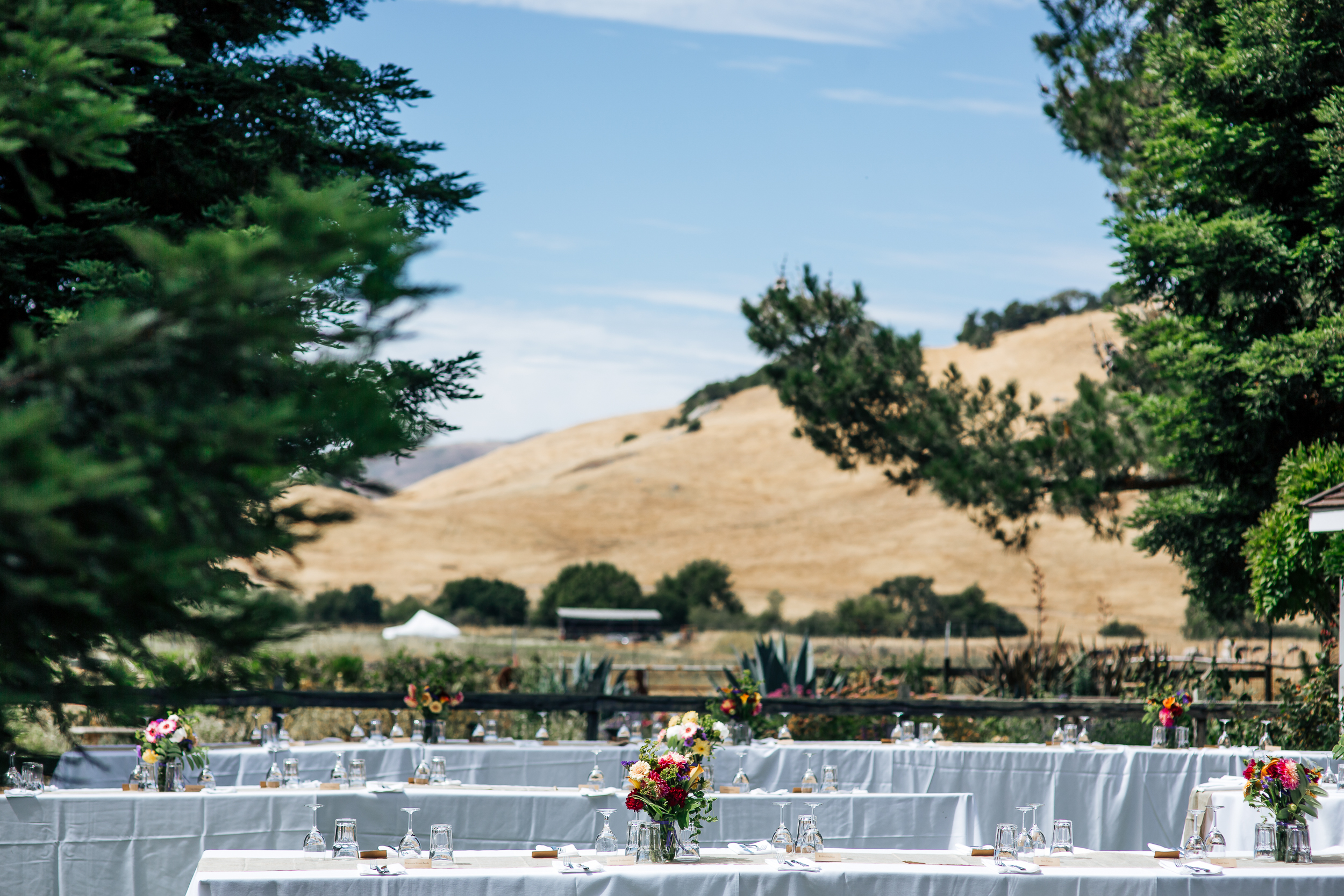 Rancho Nicasio Wedding 2018-128.jpg