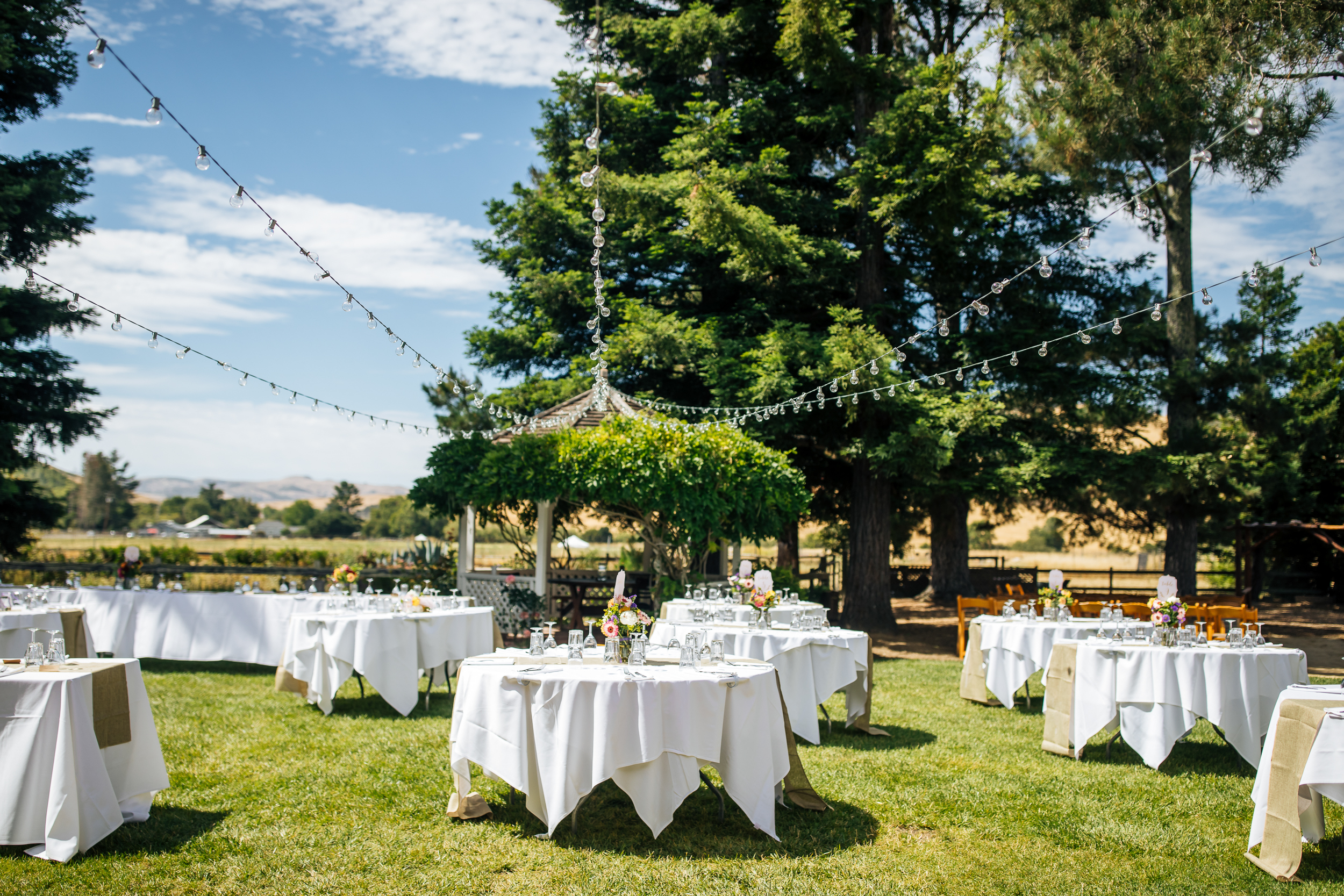 Rancho Nicasio Wedding 2018-133.jpg