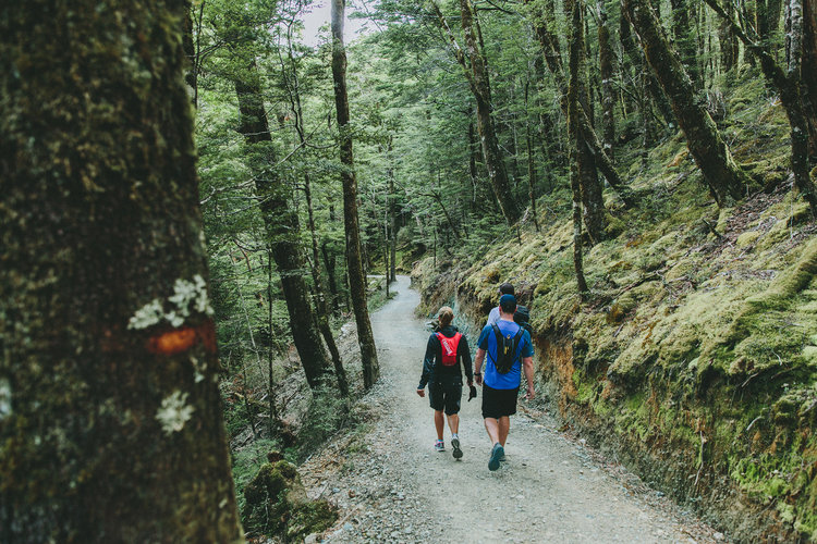 Hiking_resized-Aro-Ha_0073.jpg