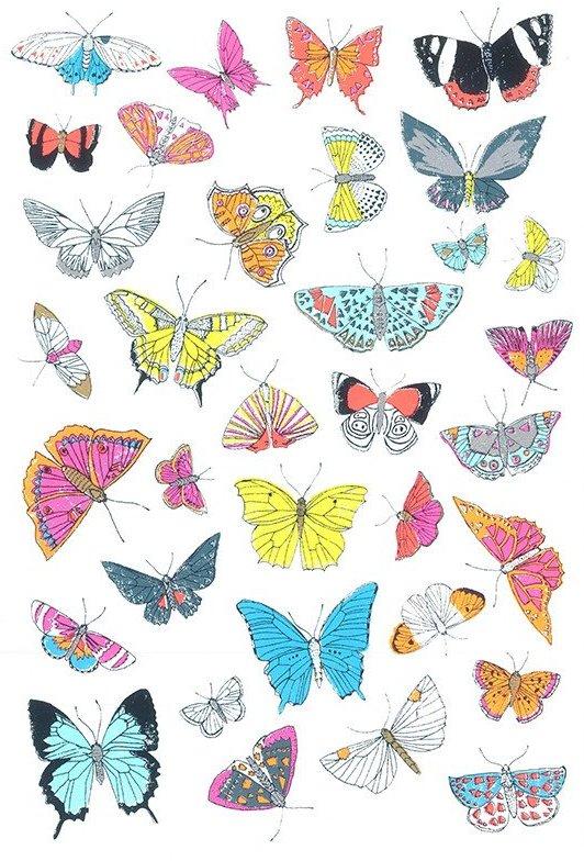 The Utterly Butterfly Effect
