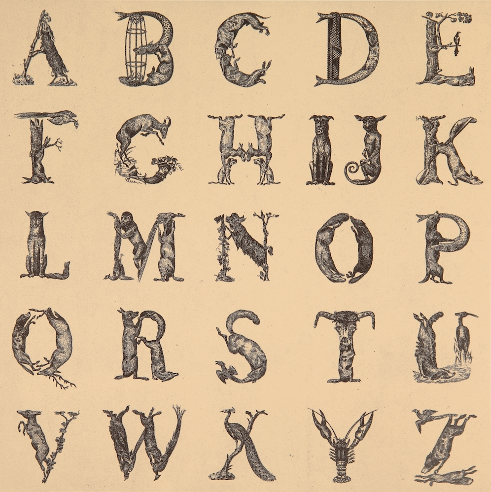 Appropriated Alphabet 12