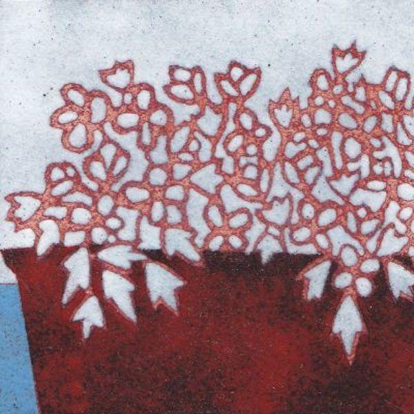 Cactus in Red Planter