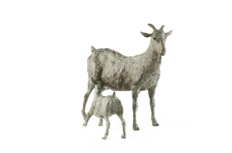 Goat & Kid