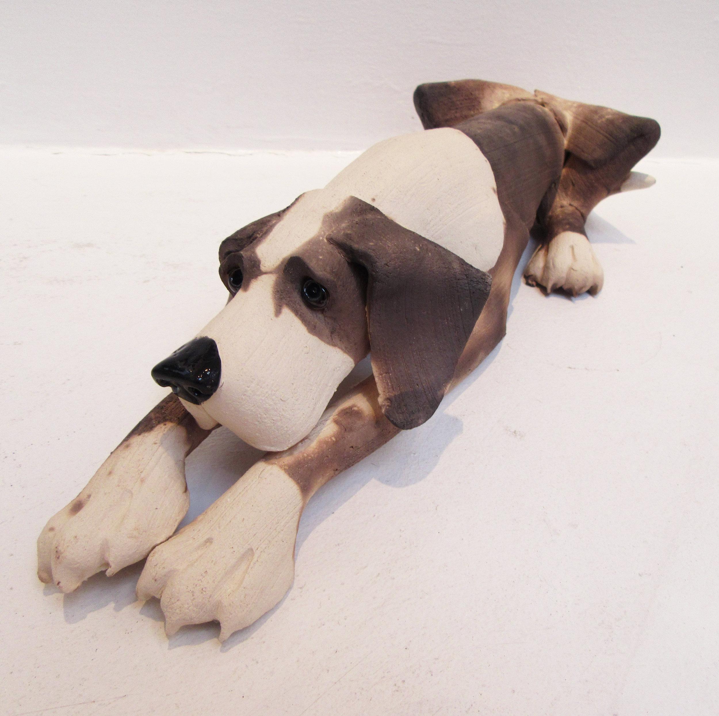 Large Lying Plain Dog