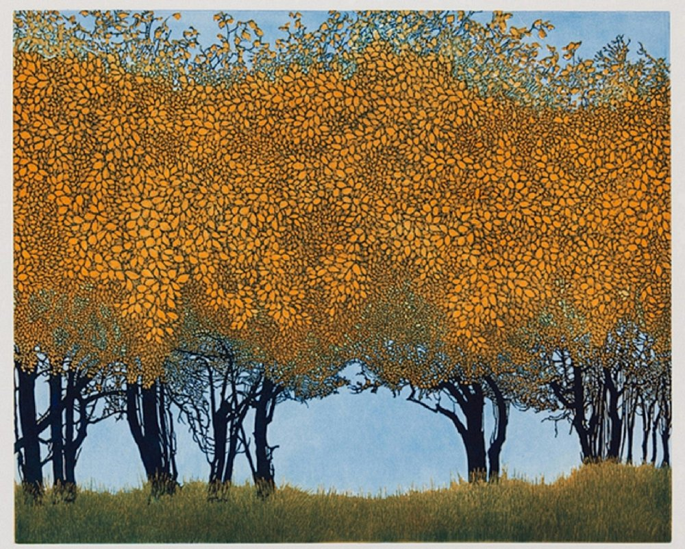 Phil Greenwood | Dancing Trees