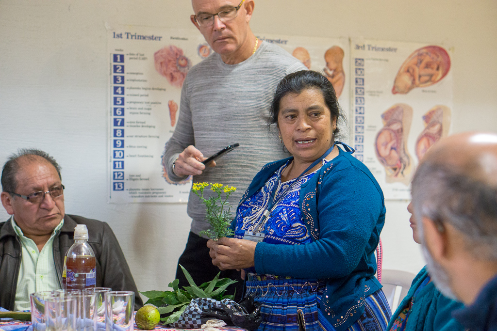 María Batz, a traditional Indigenous midwife, talks about medicinal plants with Canadian participants and Guatemalan Ministry of Health representatives