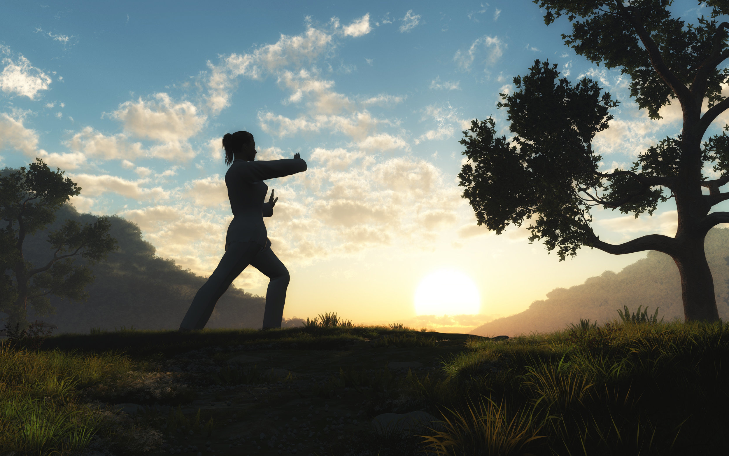 Tai Chi is a non-competitive practice, and there is no end point. - Enjoy the journey and where it may take you.Empower yourself by practicing tai chi.Empower others by teaching tai chi.