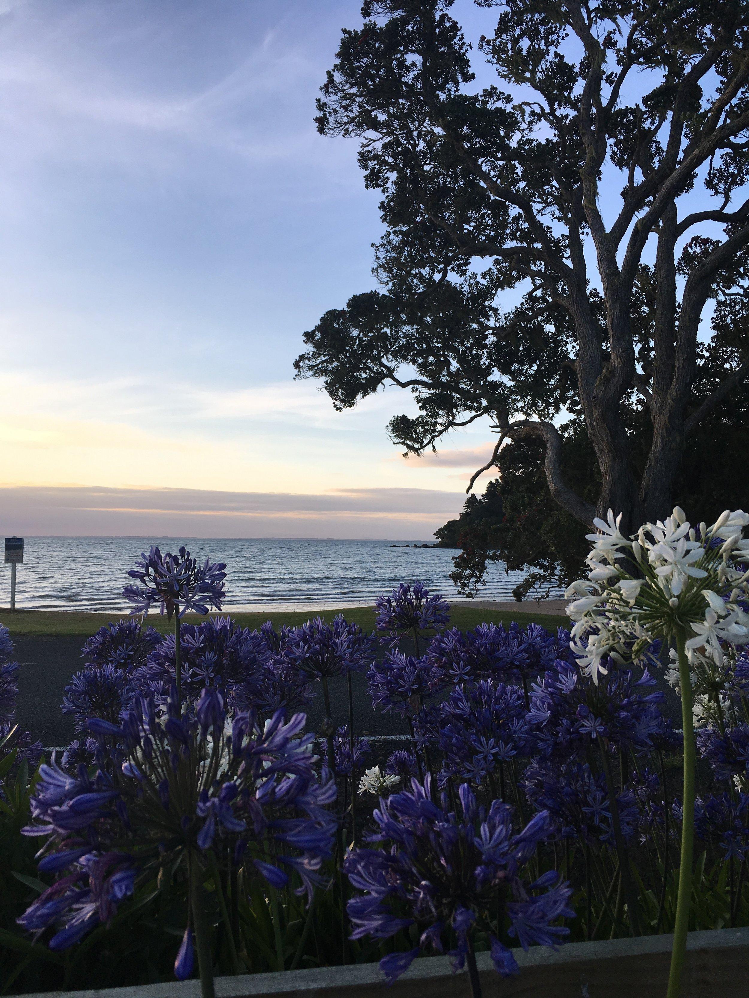 View over Hihi Beach at sunset last night
