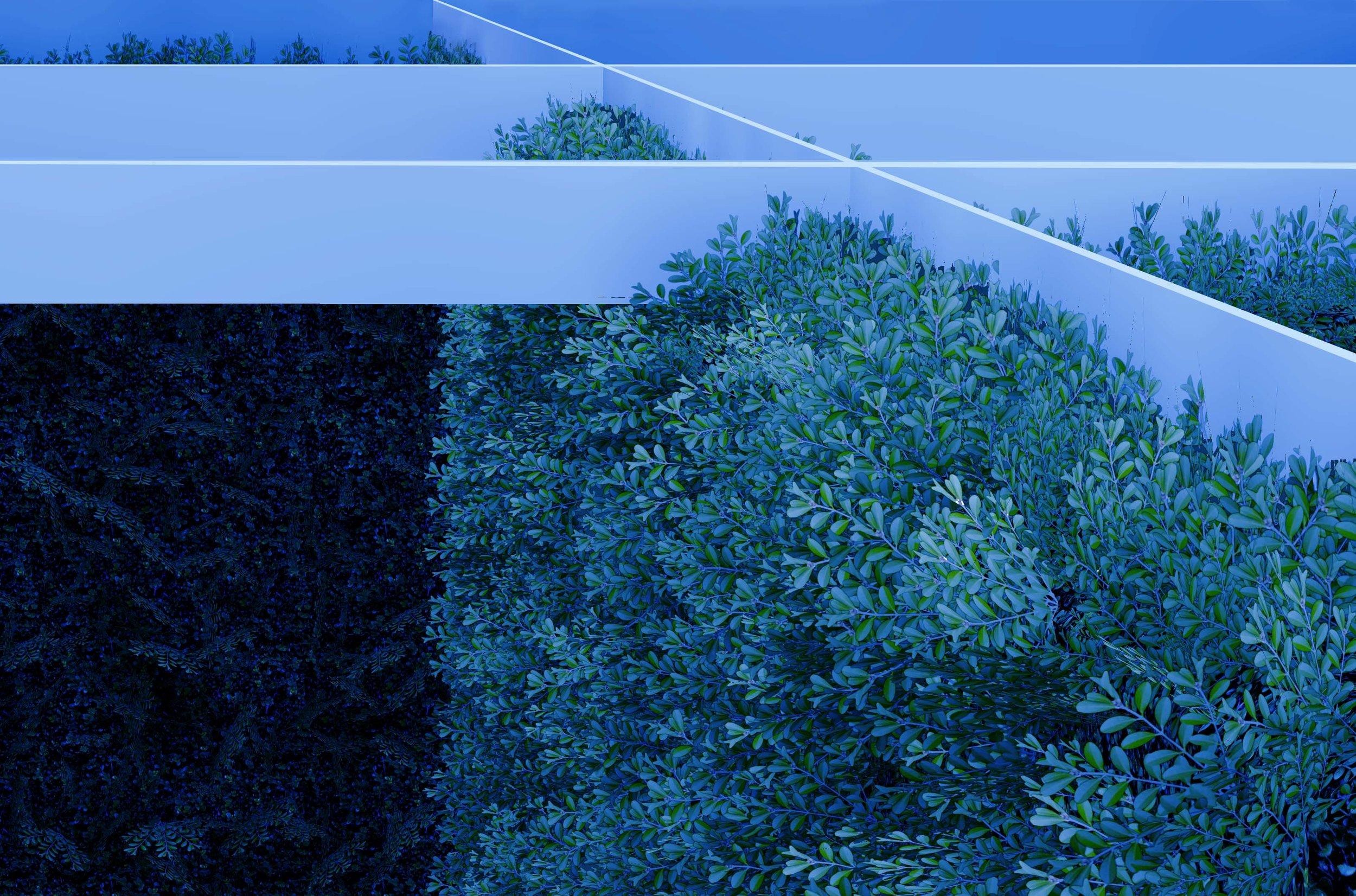 Visual_2headder.jpg