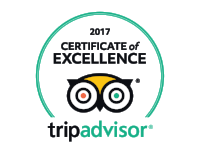 Trip Advisor Certificate of Excellence Jungle's Edge