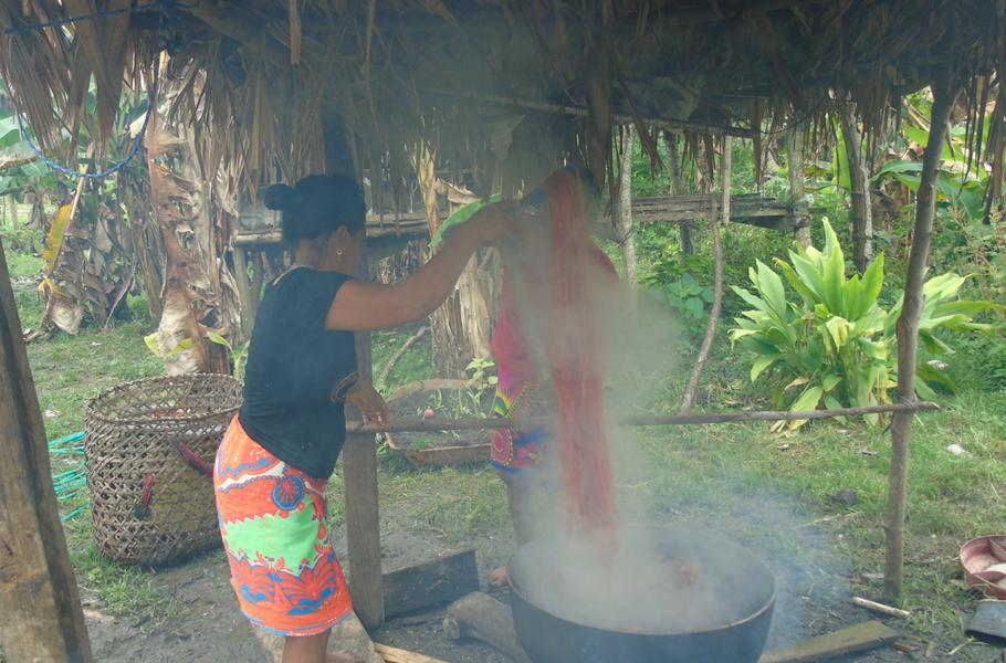 The Process of Making Emberá Animal Masks in Panama
