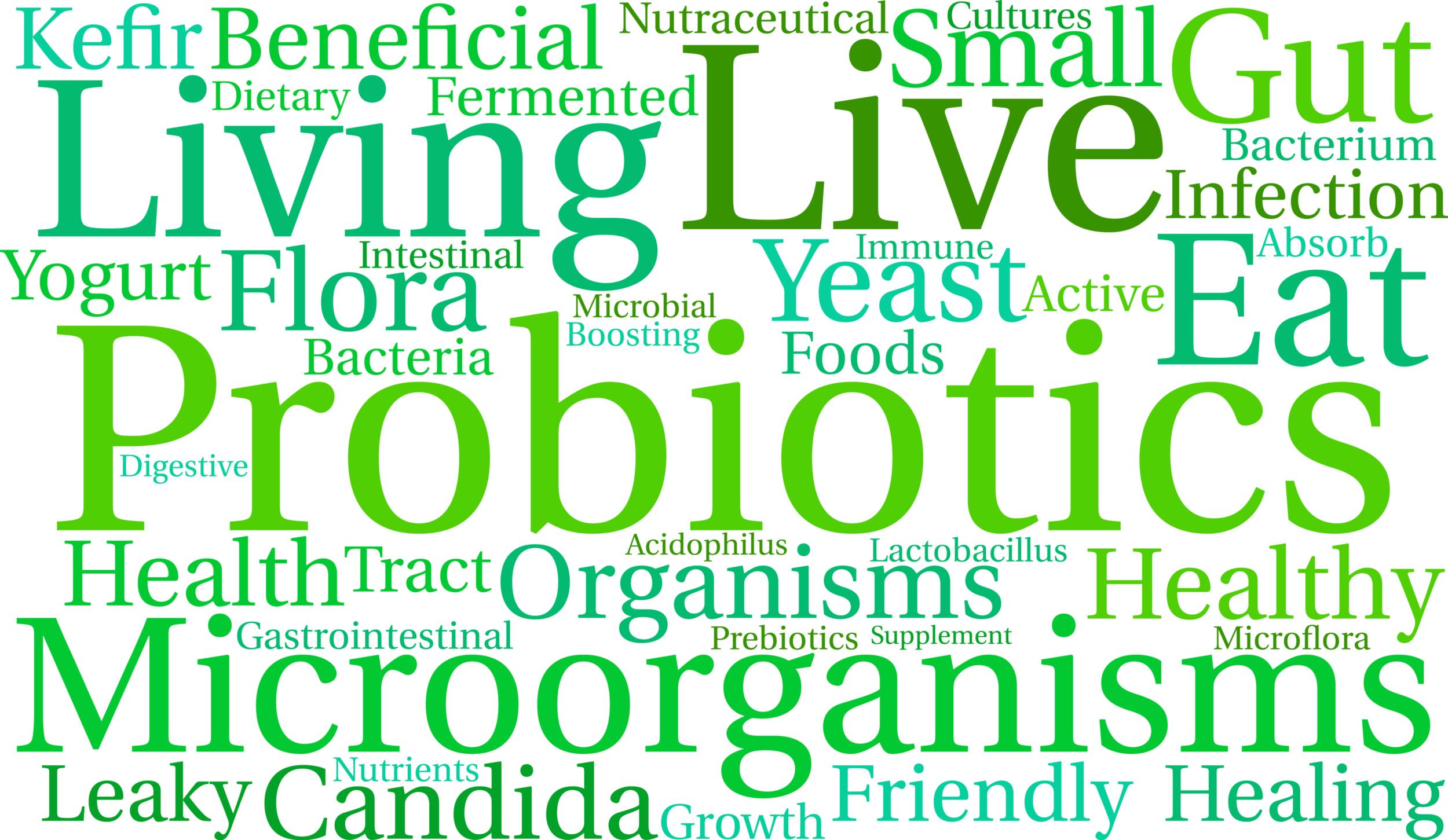 Probiotics - Lactobacillus acidophilus