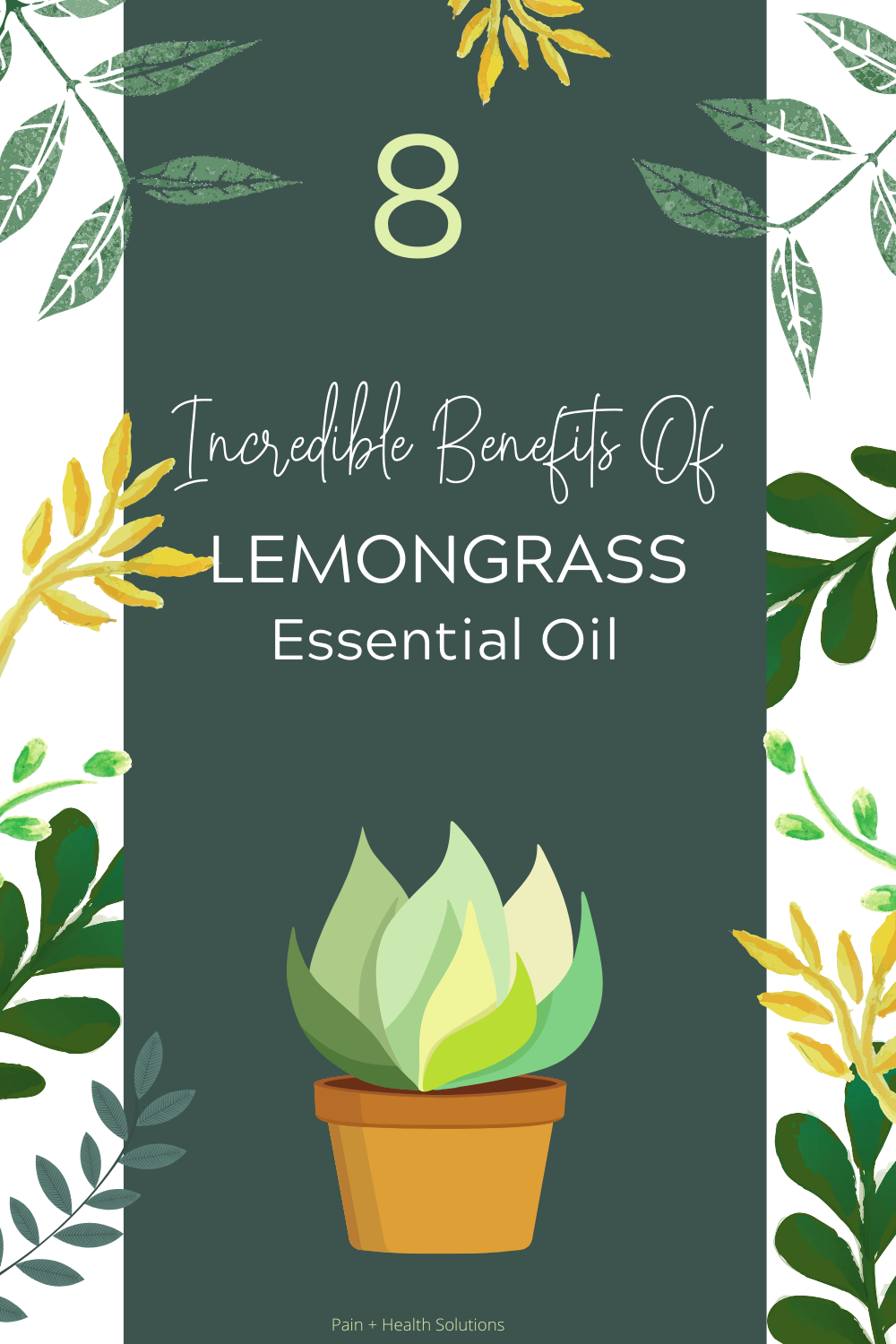 8 Amazing Benefits Of Lemongrass Essential Oil Pain Health Solutions