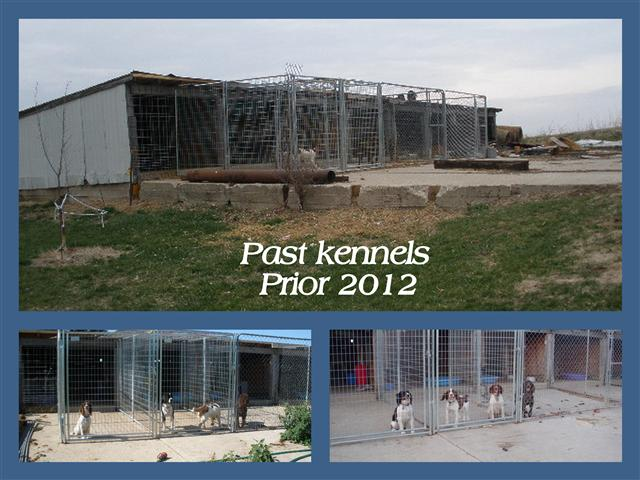 Dog kennels 2012.jpg