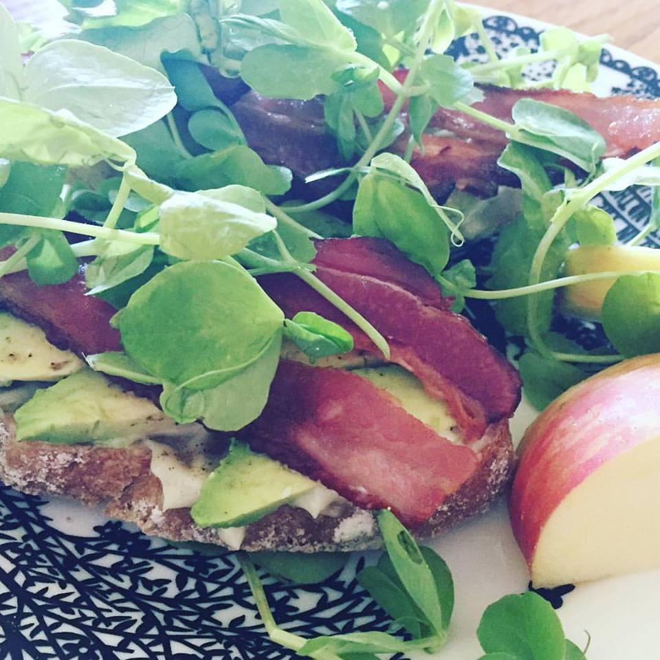 bacon pea tendril avocado on rye.jpg
