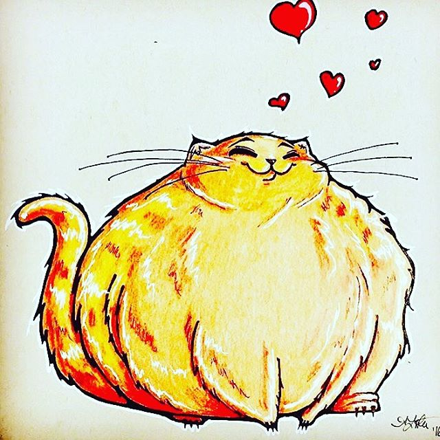 Big, fat, super happy cat! Was a birthday present to a friend. (Spoiler Alert: she loved it! 😻) . . . . . #cat #catlove #fatcat #cute #orangehair #fatty  #illustration #drawing #sketch #design #art #artist #artwork #illustrator #draw #drawing #sketching #instaart #myart #artoftheday #dailyart #doodle #doodlesofinstagram #artistsoninstagram #copic #copicmarkers #prismacolor #prismacolorpencil  #love_arts_help #_tebo_ #art_empire