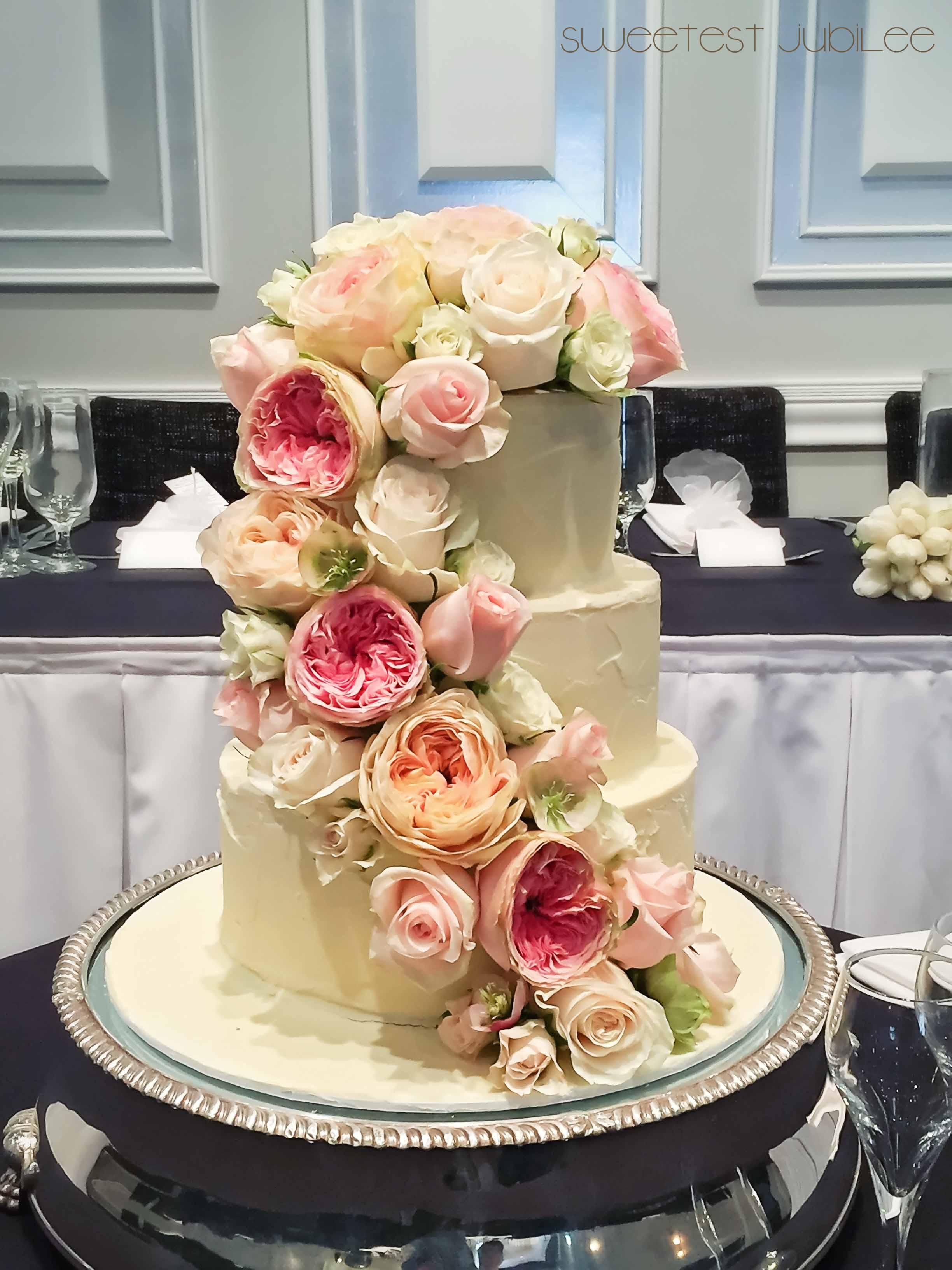 Sylvia - cake.jpg
