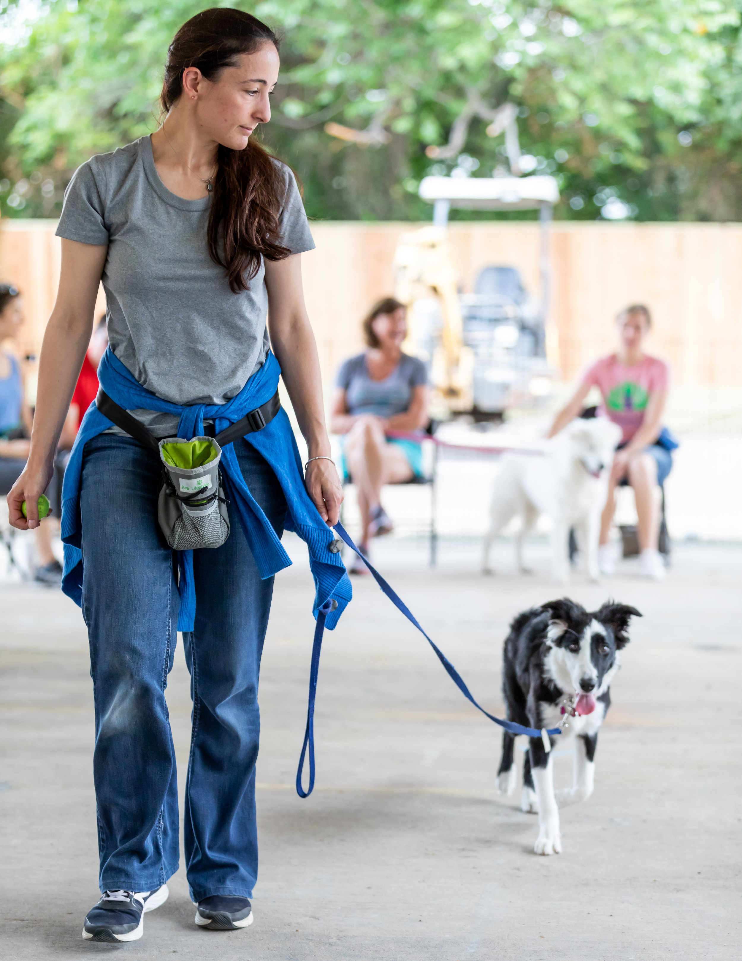 Loose Leash Walking - Can you walk your dog while holding your leash and an egg in a spoon, in the same hand?Must have completed at least one of the following classes or packages:Puppy Class Part 1, Basic Manners, Puppy Day School Package of 10 or 20, or Private Lesson Package of 3Details:• Skills Clinics are $70 each and 90 minutes long• Proof of Rabies, DHLLPP/DA2P, and Bordetella are required.Upcoming Dates:September 20th @ 6:30pm