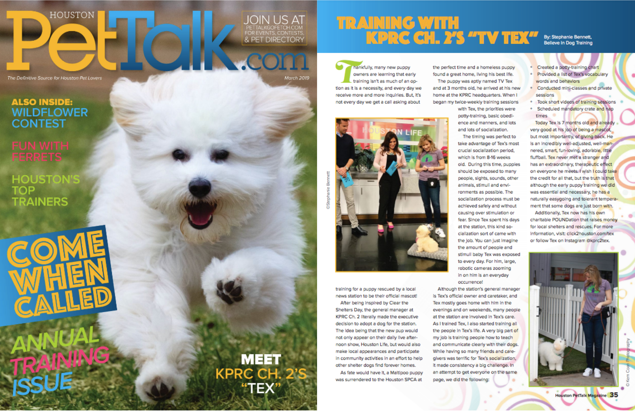 Believe in Dog Training TV Tex on Cover of PetTalk.com 2019.png