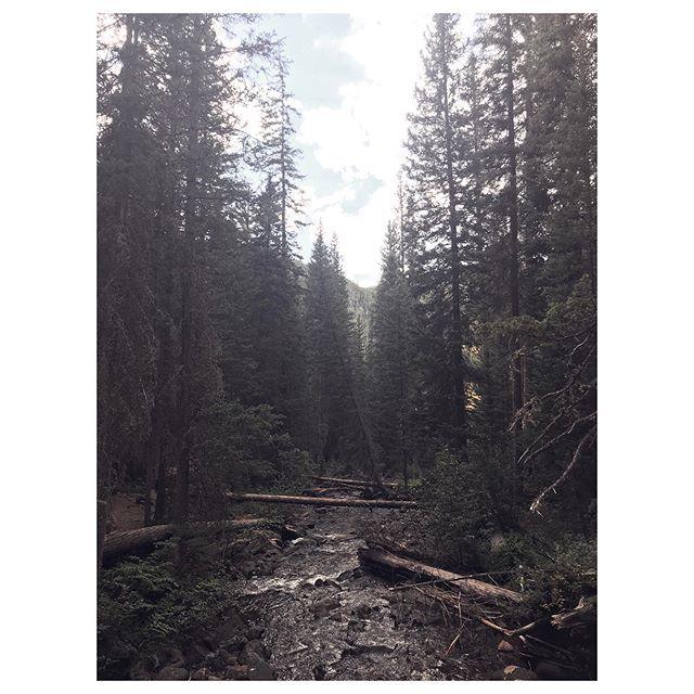 Colorado  3/3