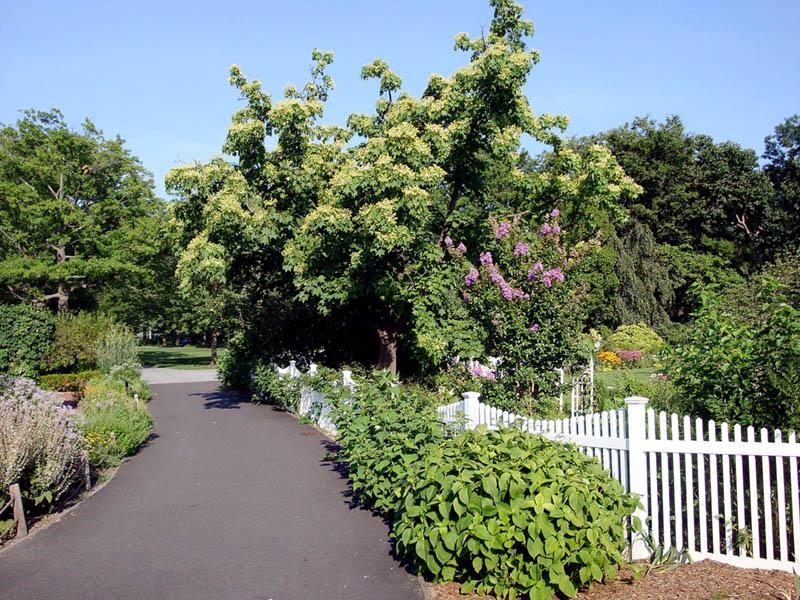 Queens_Botanical_Garden-NYC-Untapped-Cities.jpg