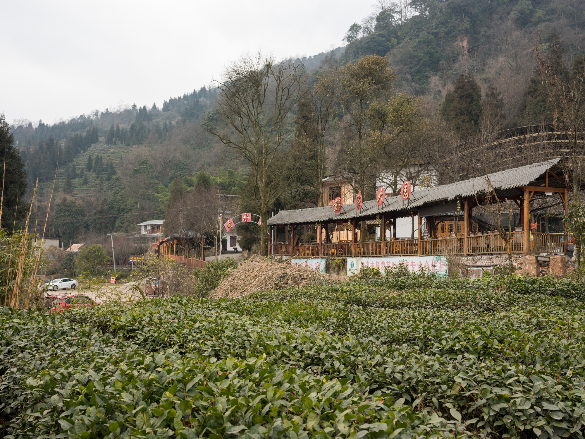 "The ""teahouse"" village, at nearly 1,000+ meters up on Mengding Mountain. The remote and hard to reach source of the best Gan Lu tea."