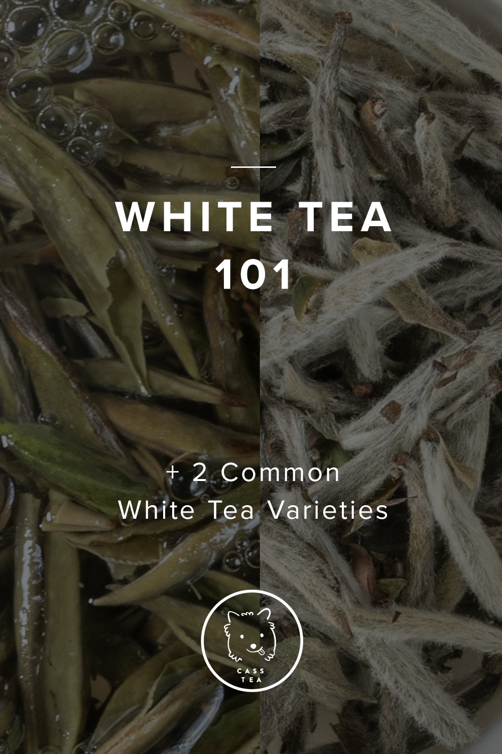 White Tea 101 will bring you up to speed on the basics of White tea. As the most minimally processed, and often misunderstood tea category, hopefully you'll find this quick cheat sheet fun and see what makes White tea so special.
