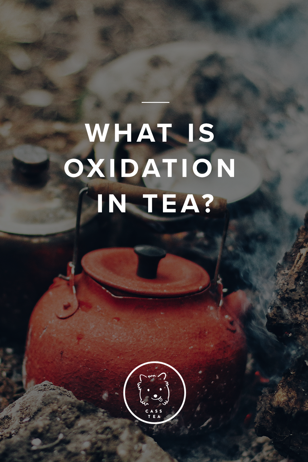 In the world of tea you made have heard about Oxidation, and it's no surprise as to why: the production of tea encourages or discourages oxidation, resulting in different categories of tea. Put simply, Green tea is 0% oxidized, and Red Tea (called Black in the West) is fully oxidized. But this doesn't answer the fundamental question: what  is  oxidation?