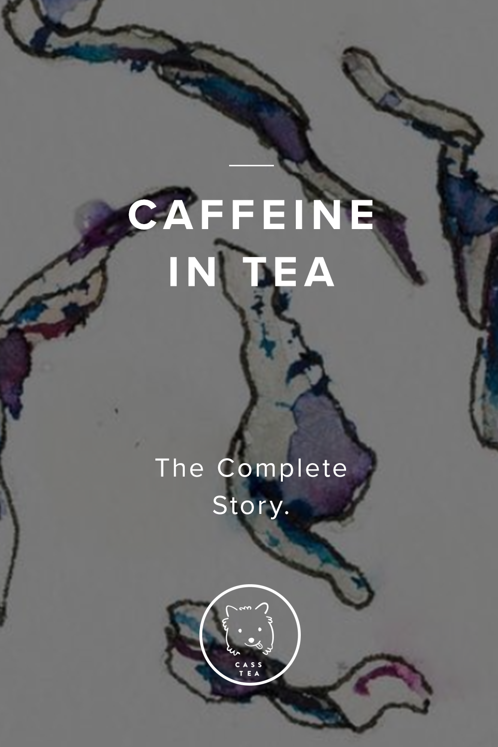 Does Tea have Caffeine? Learn how tea is decaffeinated, and how to do it yourself.