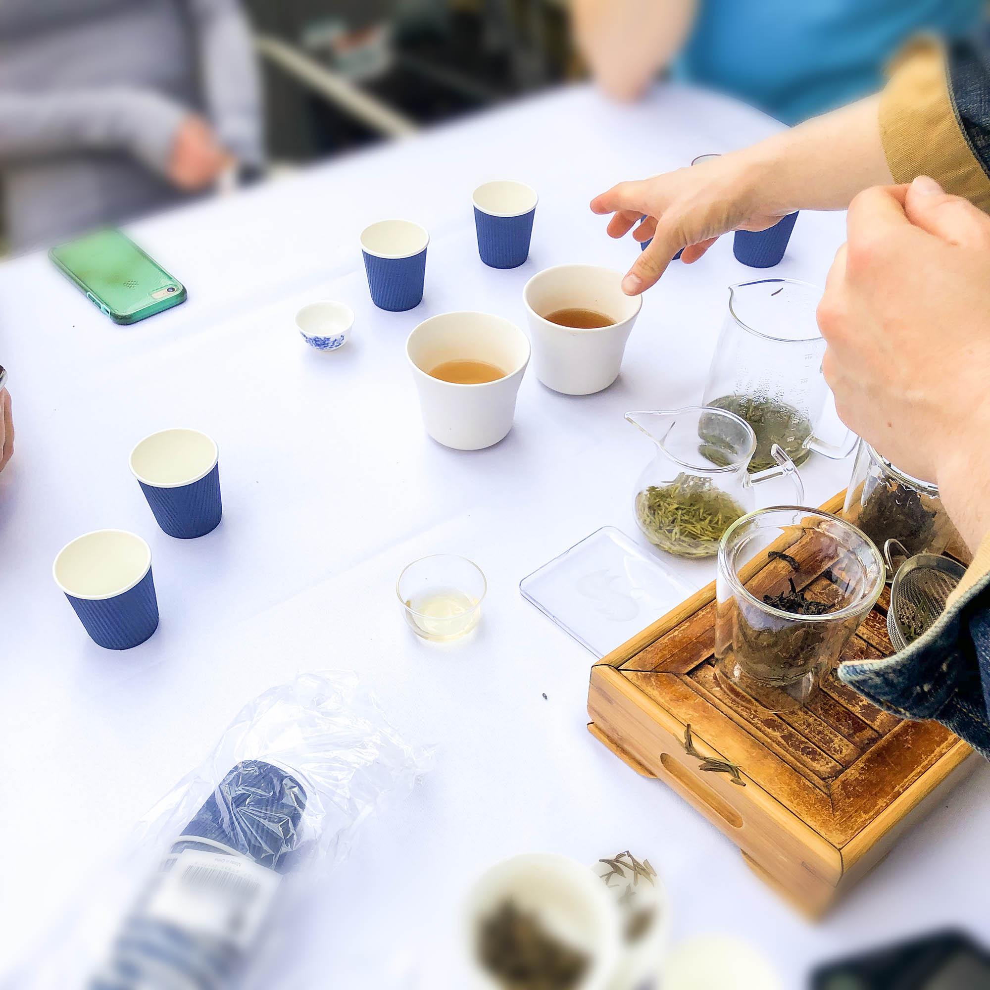 Tea Tasting Cass Tea