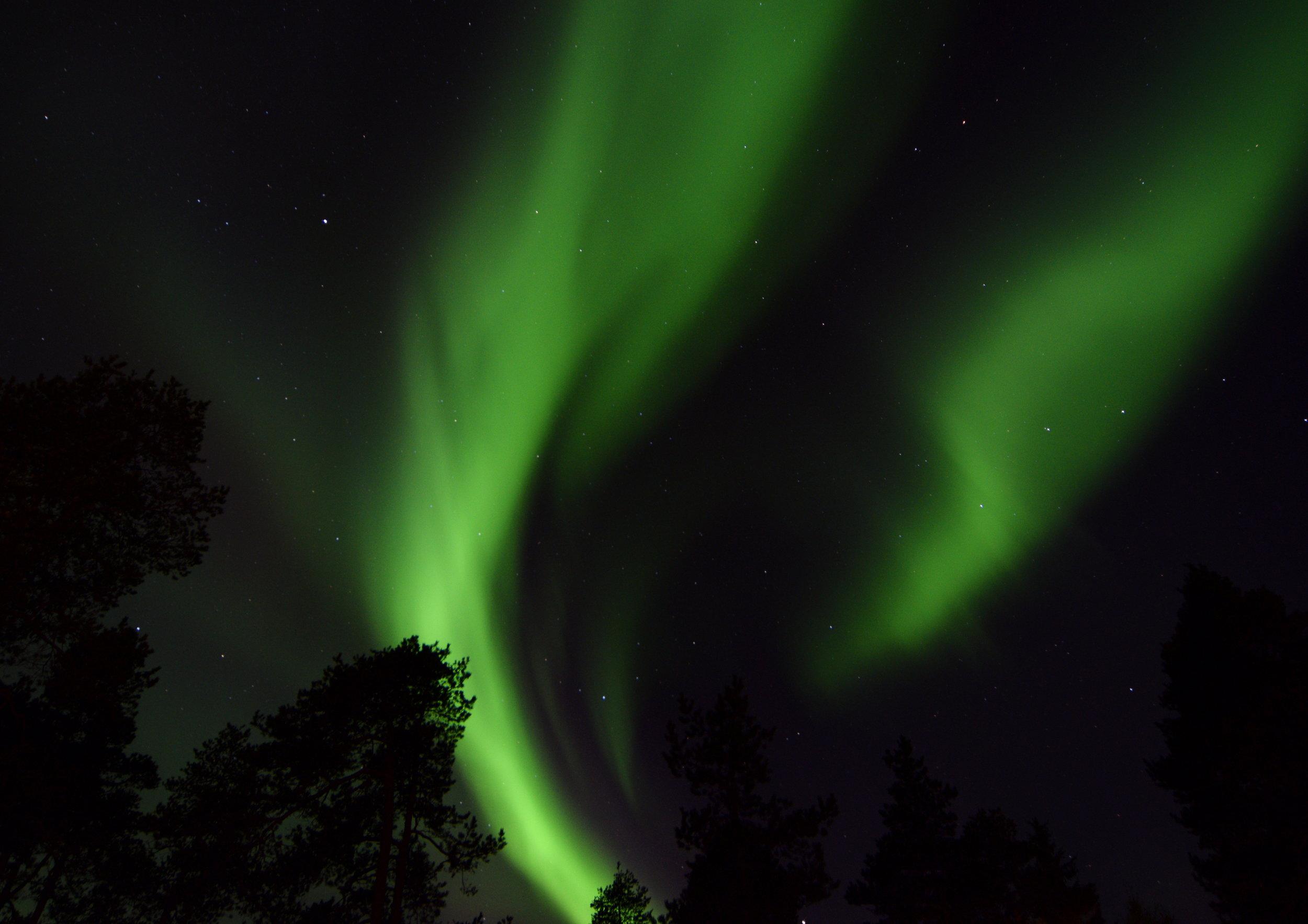 Aurora Waves