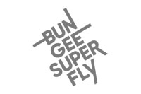 bungee+superfly.jpg