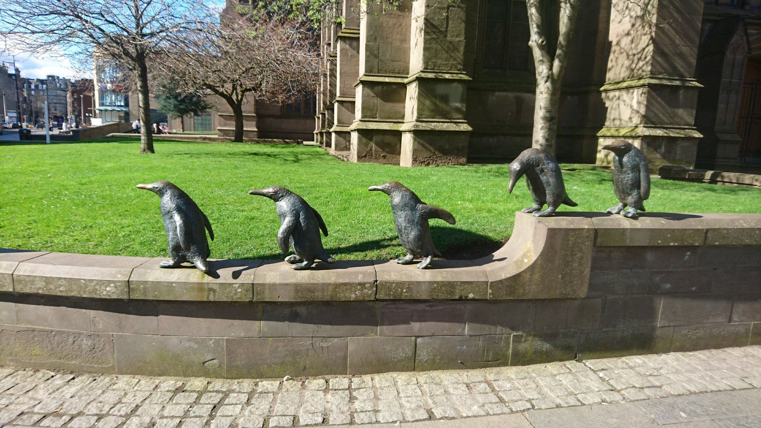 Captain Scott's Penguins strolling about town, Dundee / Jenny Eve