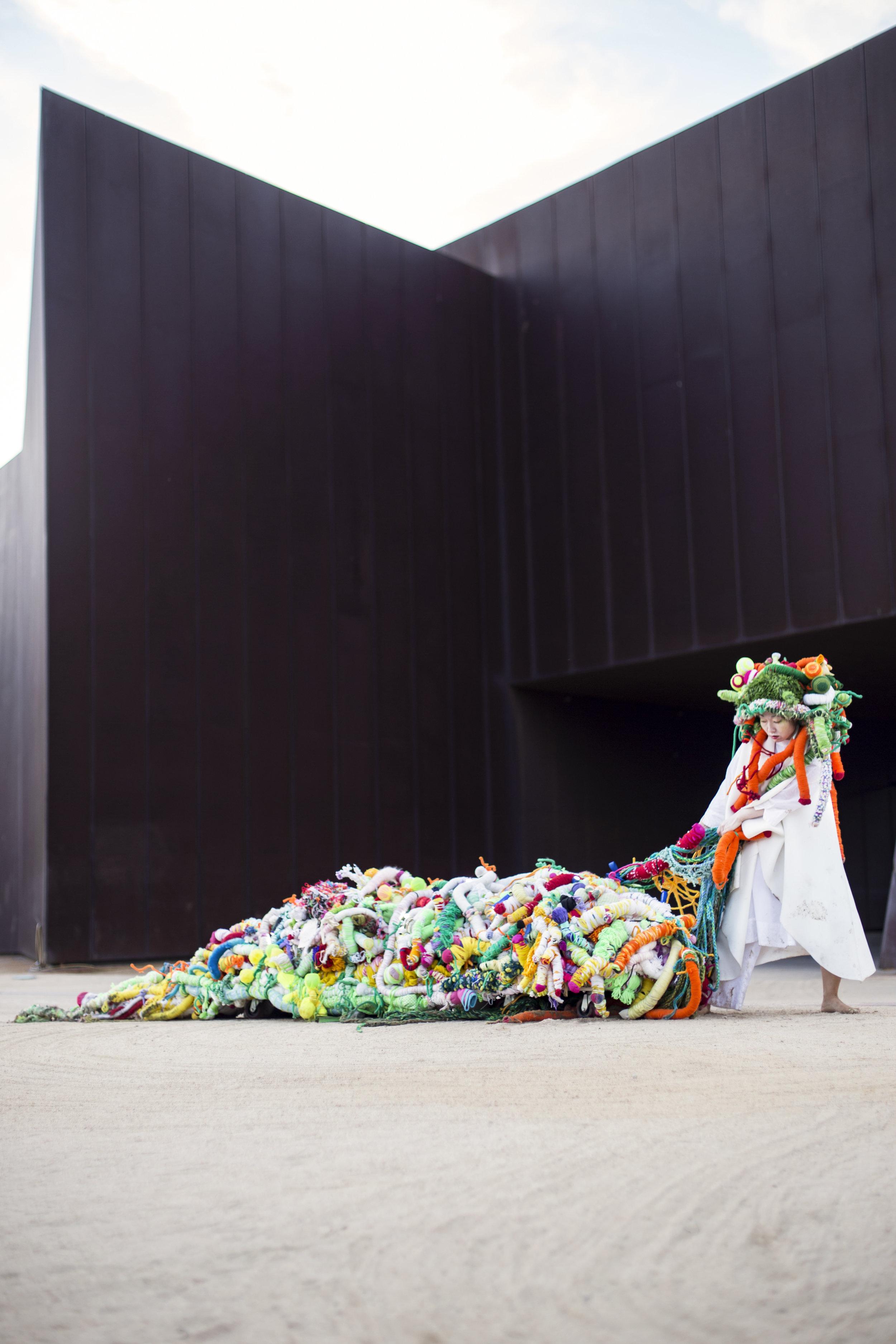艺术家Hiromi Tango 作品《Lizard Tail (Dawn)》