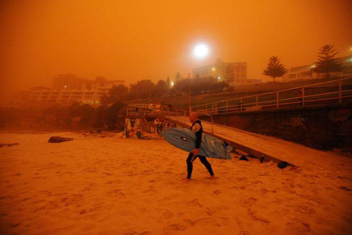 2009年9月一名冲浪者在悉尼邦迪海滩(图片来源 :AAP Tracey Nearmy)