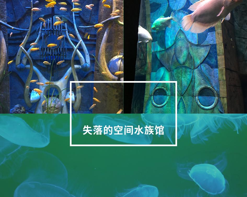 南 上失落的空间水族馆01.png