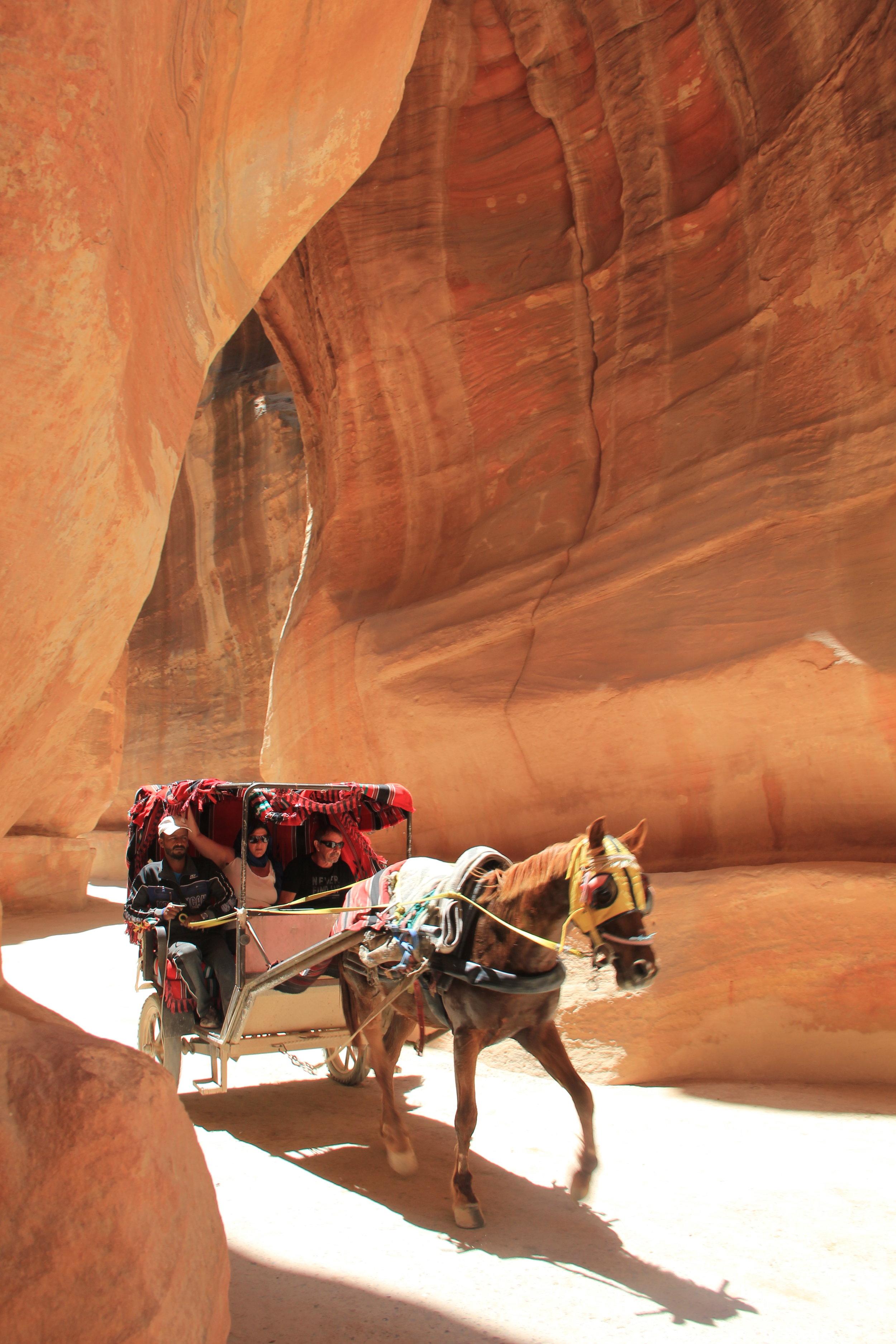 峡谷中的马车