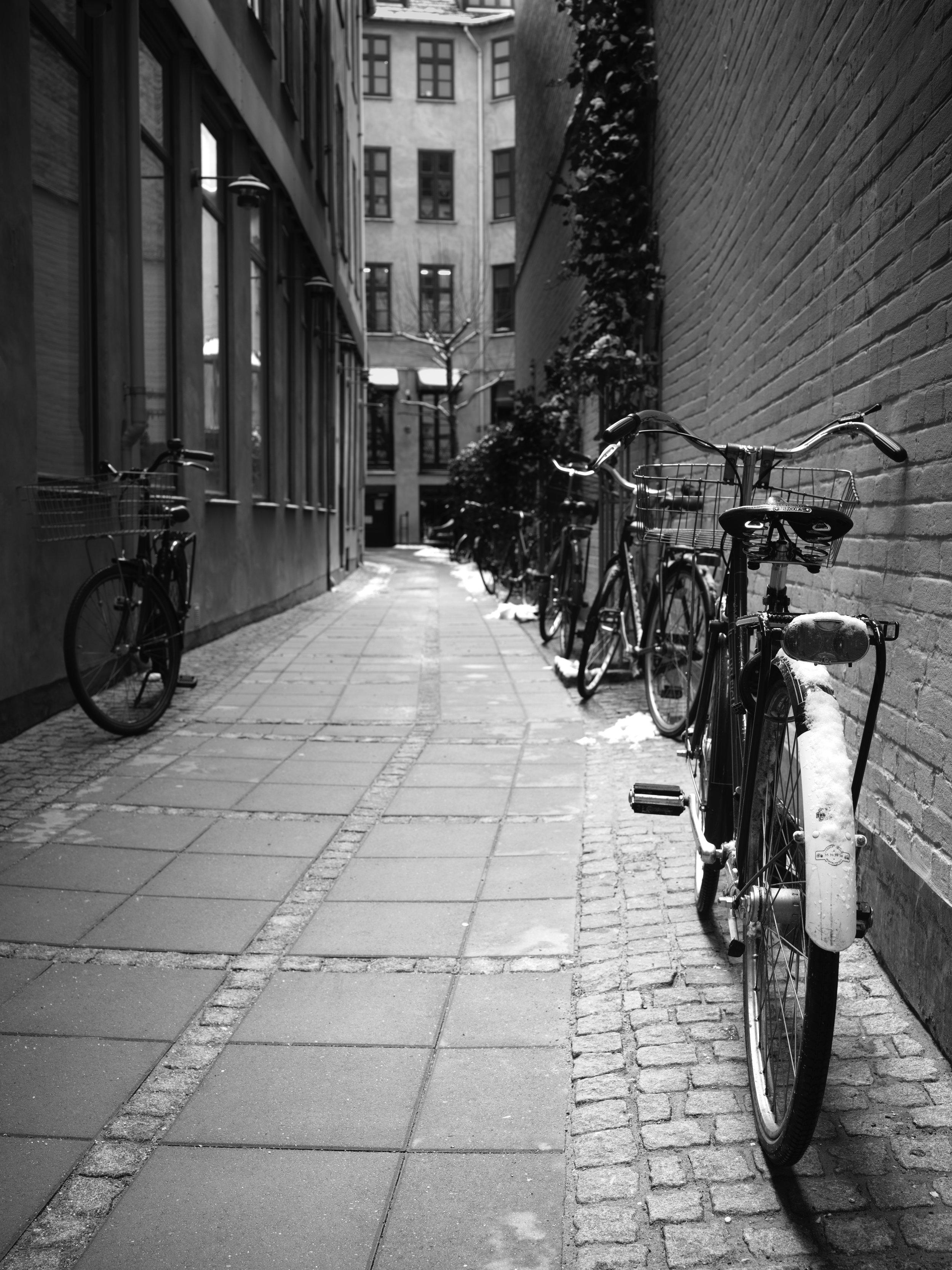 1811H Copenhagen_0014.jpg