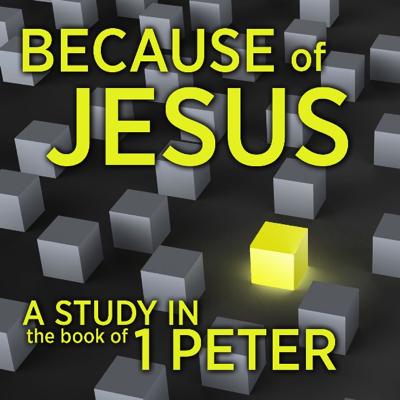 Because of Jesus.png