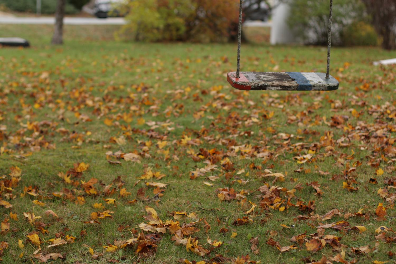 B16_Nov05_Fall_Photo_Walk_05.jpg