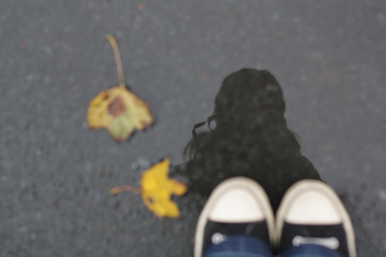 B16_Nov10_Fall_Photo_Walk_08.jpg