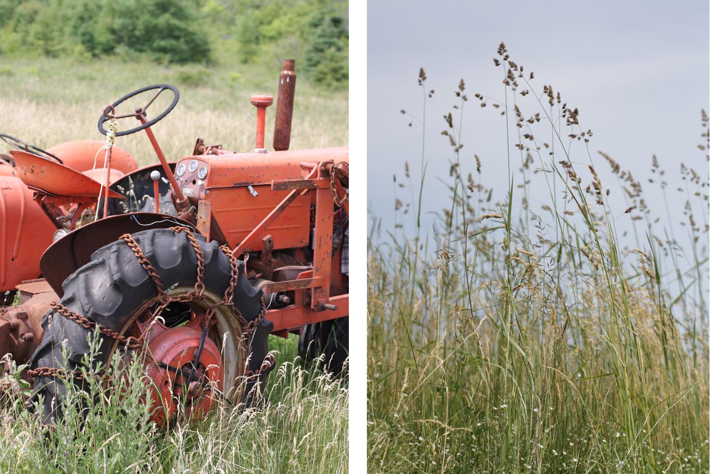 B16_Jun05_Tractor_Farm_06.jpg