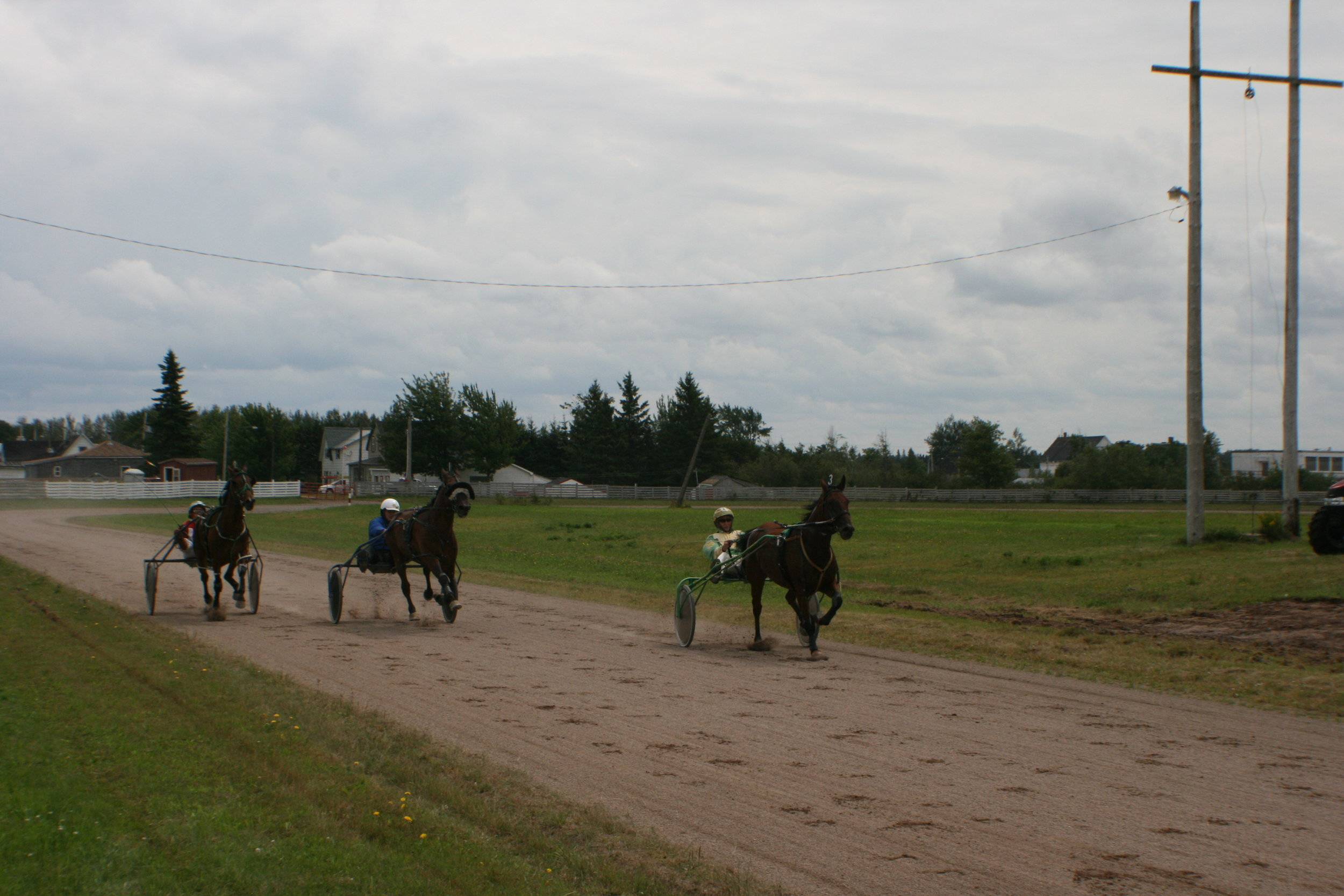 Three entrants race into the home stretch during a matinee card of exhibition harness racing at the Port Elgin Exhibition on Aug. 20. (Joan LeBlanc photo)