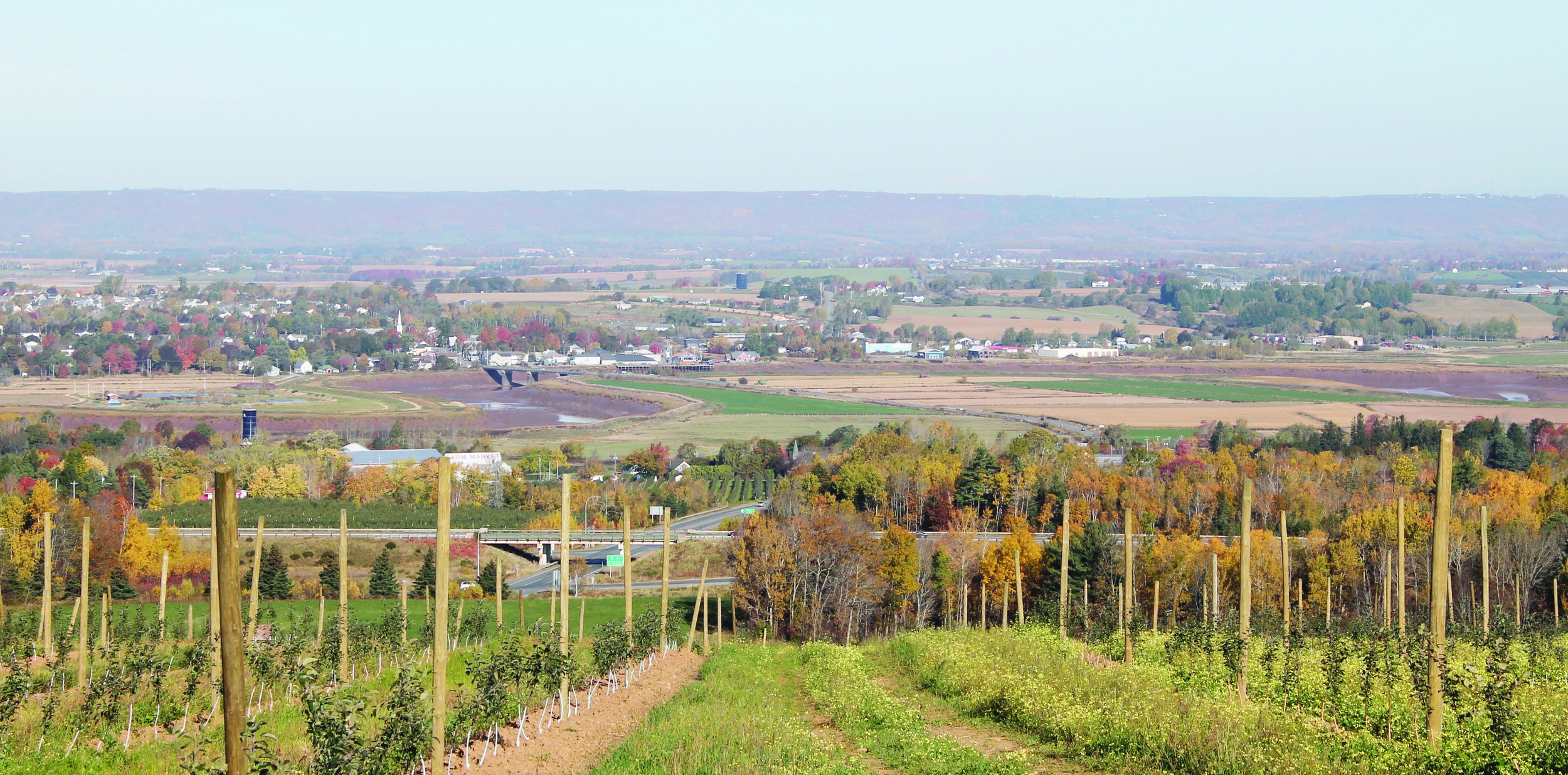 A view of the Annapolis Valley and North Mountain from the Ridge Road on the outskirts of Wolfville, Kings County, N.S. (Emily Leeson photo)