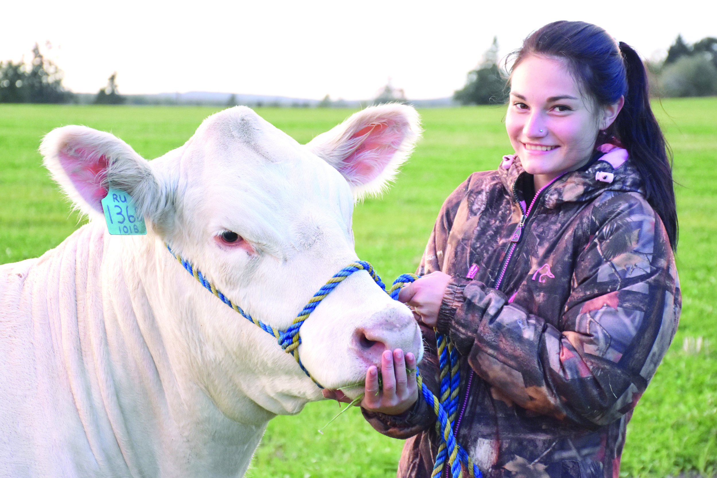Alex Smith and her Charolais heifer Drama Queen at Balamore Farm in Great Village, N.S., in early October. (Carolyn Cooper photo)